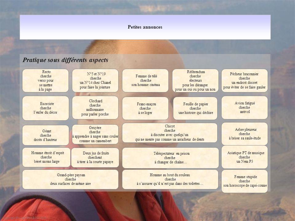 Petites annonces Pratique sous différents aspects Copyright Philippe GOURDIN 2010 Recto cherche verso pour se mettre à la page N°5 et N°19 cherche un