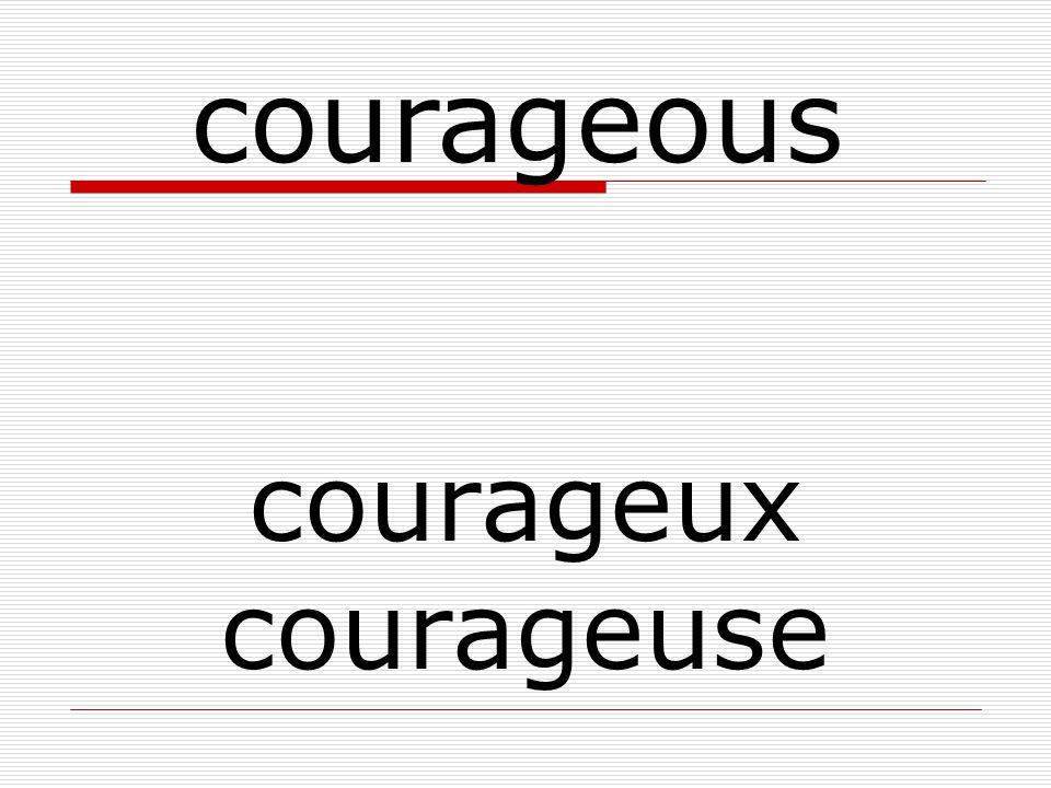 courageux courageuse courageous