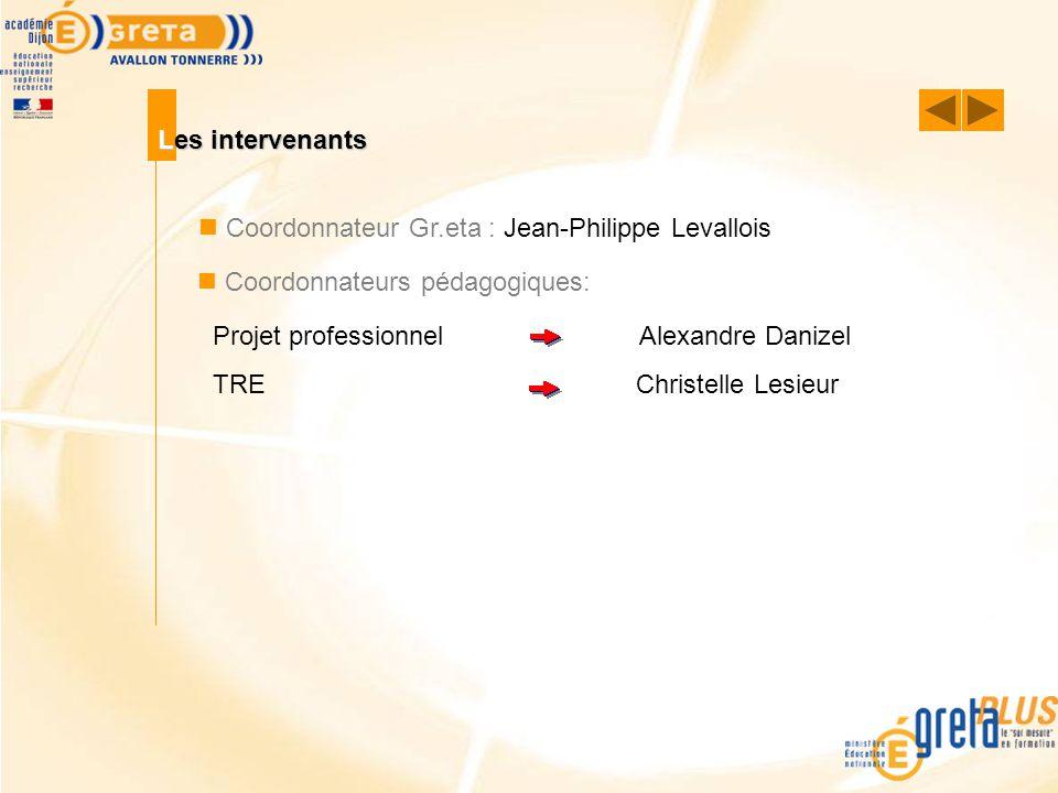 Les intervenants Coordonnateur Gr.eta : Jean-Philippe Levallois Coordonnateurs pédagogiques: Projet professionnel Alexandre Danizel TREChristelle Lesi