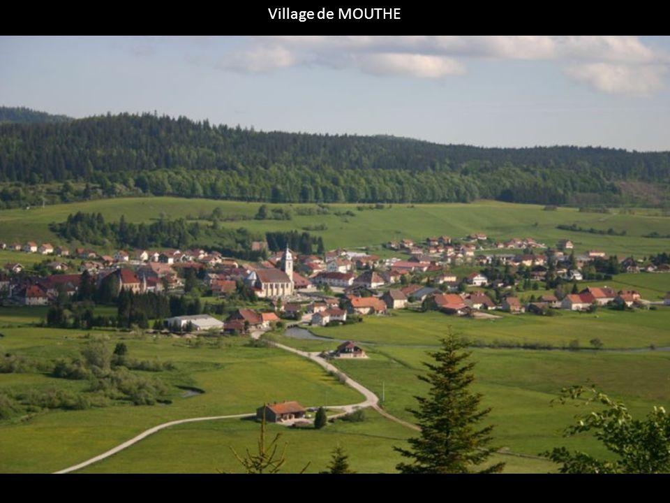 Le Doubs prend sa source a Mouthe, au fond d'une grotte située dans la foret de Noirmont.