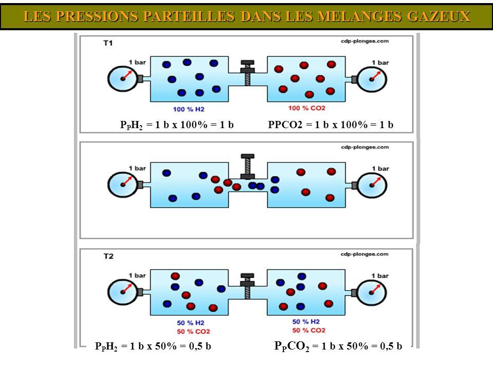 P P H 2 = 1 b x 50% = 0,5 b P P CO 2 = 1 b x 50% = 0,5 b P P H 2 = 1 b x 100% = 1 bPPCO2 = 1 b x 100% = 1 b