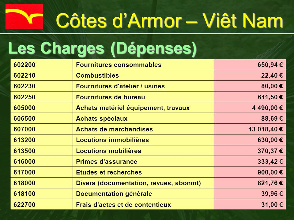 Côtes d'Armor – Viêt Nam Les Charges (Dépenses) Les Charges (Dépenses) 602200Fournitures consommables650,94 € 602210Combustibles22,40 € 602230Fournitu