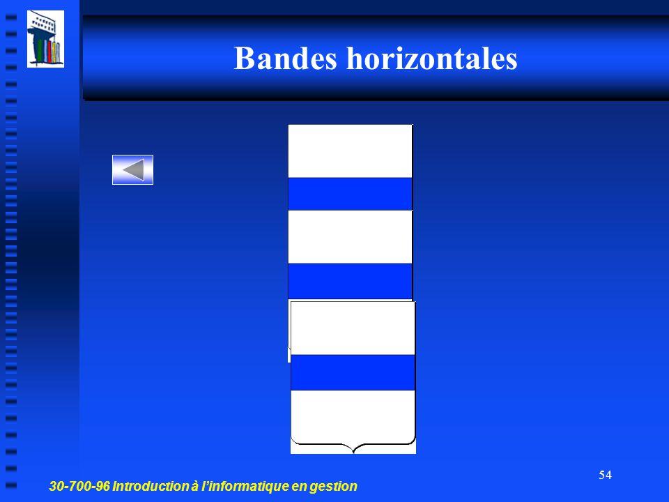 30-700-96 Introduction à l'informatique en gestion 53 Damier horizontal