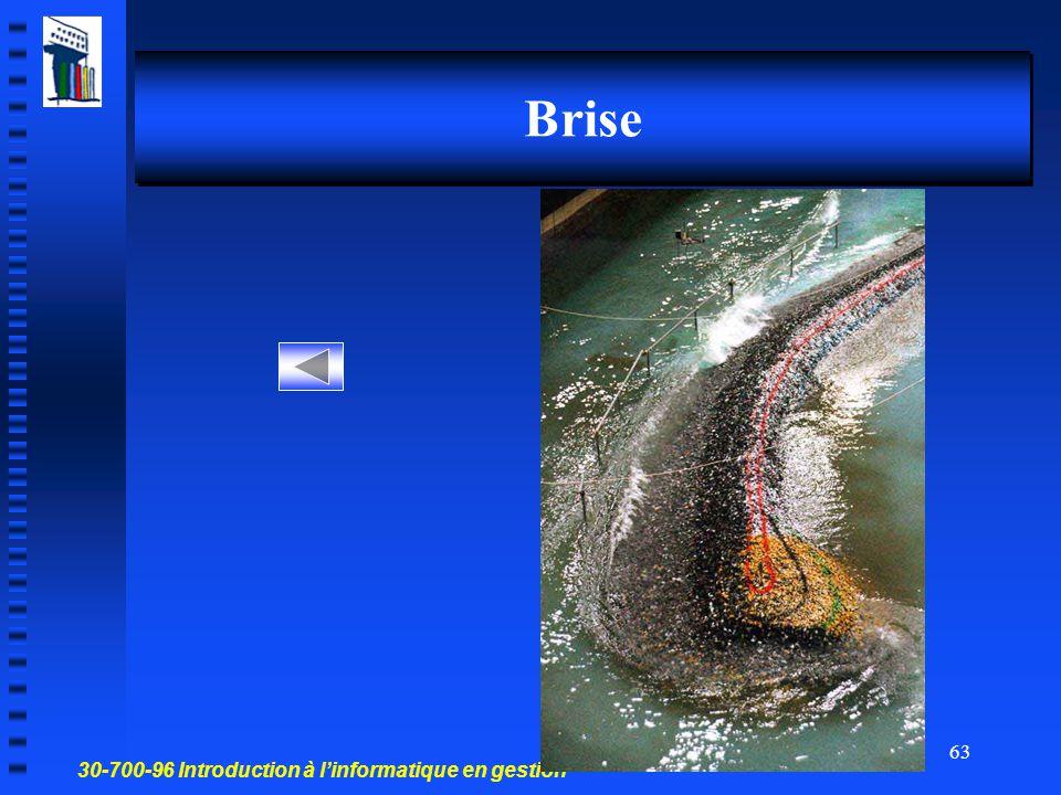 30-700-96 Introduction à l'informatique en gestion 62 Bombe
