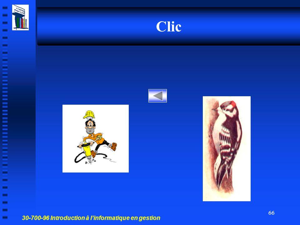 30-700-96 Introduction à l'informatique en gestion 65 Carillon