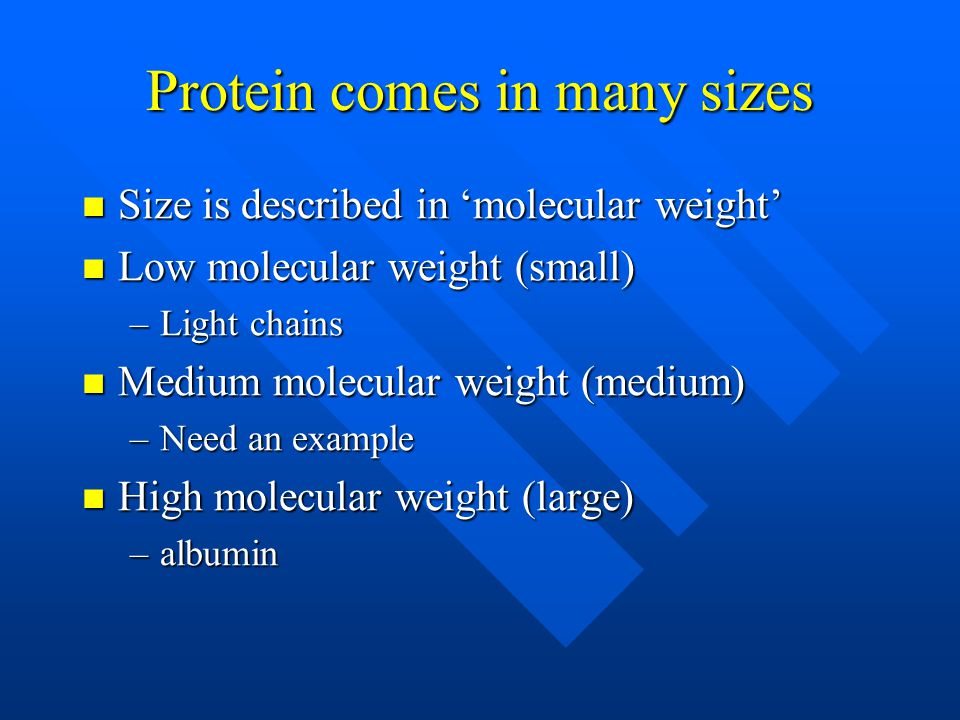 Protein comes in many sizes Size is described in 'molecular weight' Size is described in 'molecular weight' Low molecular weight (small) Low molecular weight (small) –Light chains Medium molecular weight (medium) Medium molecular weight (medium) –Need an example High molecular weight (large) High molecular weight (large) –albumin