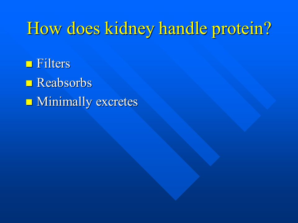 How does kidney handle protein? Filters Filters Reabsorbs Reabsorbs Minimally excretes Minimally excretes