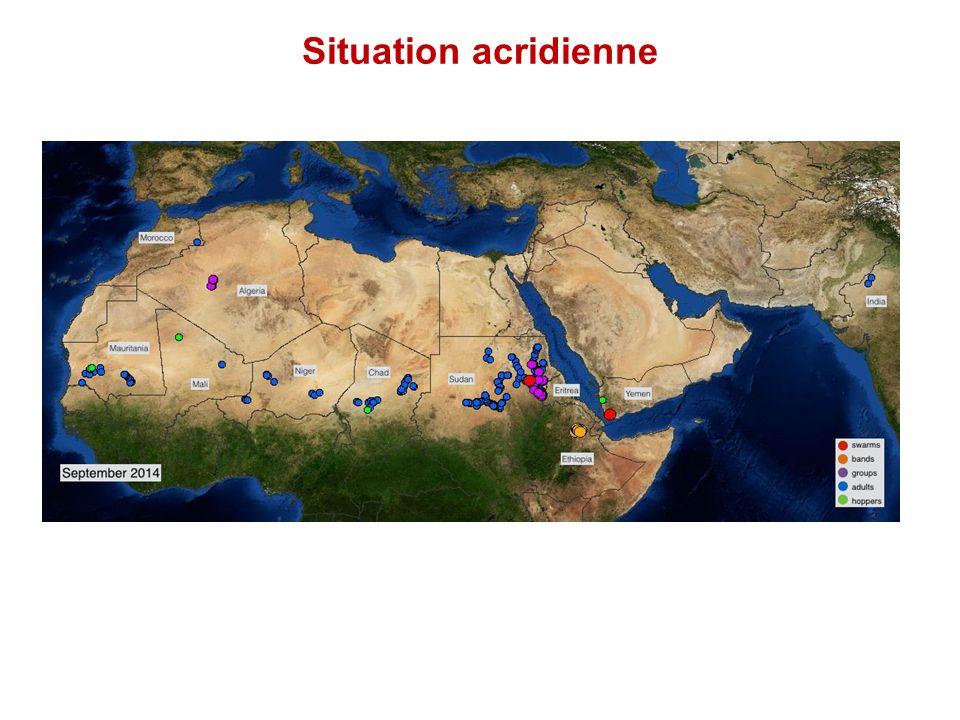 Situation des déplacements de population dans la région Mali : Baisse continue du nombre de déplacés internes: 99 816 au 30 septembre 2014 Niger : Diffa Situation sécuritaire actuellement calme Tchad : Arrivées sporadiques depuis fin août 2014, 18 000 personnes dans les famille hôtes
