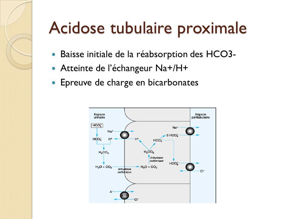 Acidose tubulaire proximale Baisse initiale de la réabsorption des HCO3- Atteinte de l'échangeur Na+/H+ Epreuve de charge en bicarbonates