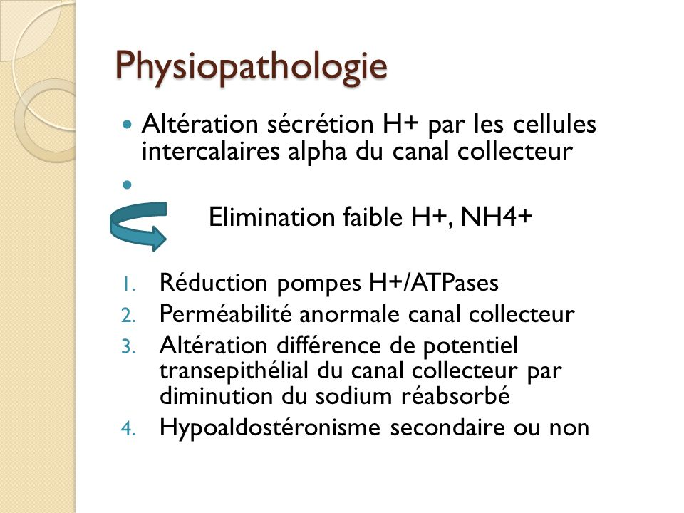 Physiopathologie Altération sécrétion H+ par les cellules intercalaires alpha du canal collecteur Elimination faible H+, NH4+ 1. Réduction pompes H+/A
