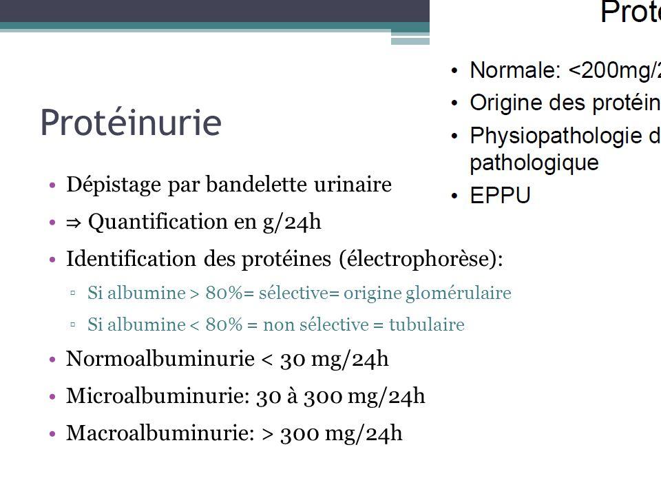 Protéinurie Dépistage par bandelette urinaire ⇒ Quantification en g/24h Identification des protéines (électrophorèse): ▫Si albumine > 80%= sélective=