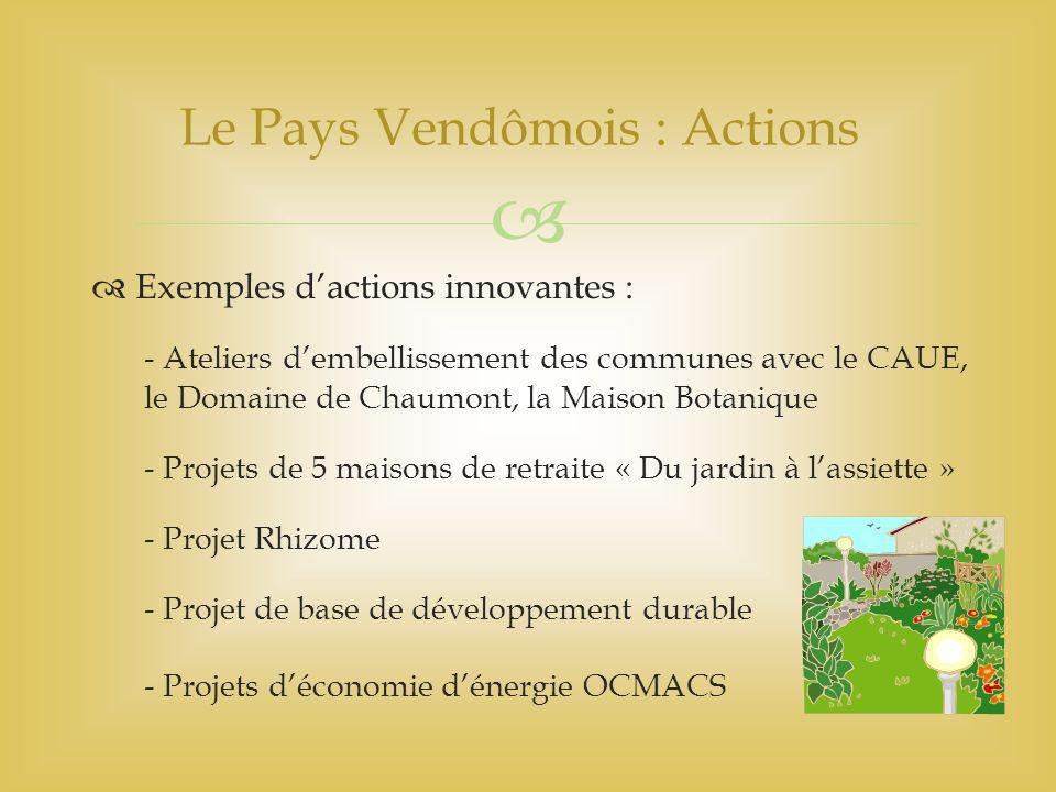   Exemples d'actions innovantes : - Ateliers d'embellissement des communes avec le CAUE, le Domaine de Chaumont, la Maison Botanique - Projets de 5 maisons de retraite « Du jardin à l'assiette » - Projet Rhizome - Projet de base de développement durable - Projets d'économie d'énergie OCMACS Le Pays Vendômois : Actions