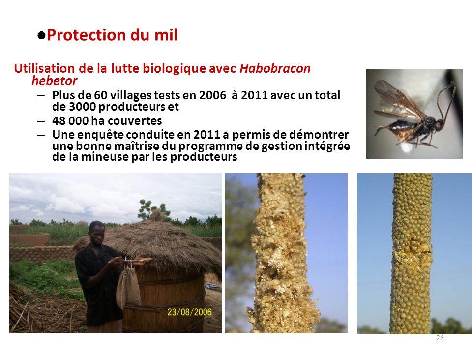 26 Utilisation de la lutte biologique avec Habobracon hebetor – Plus de 60 villages tests en 2006 à 2011 avec un total de 3000 producteurs et – 48 000