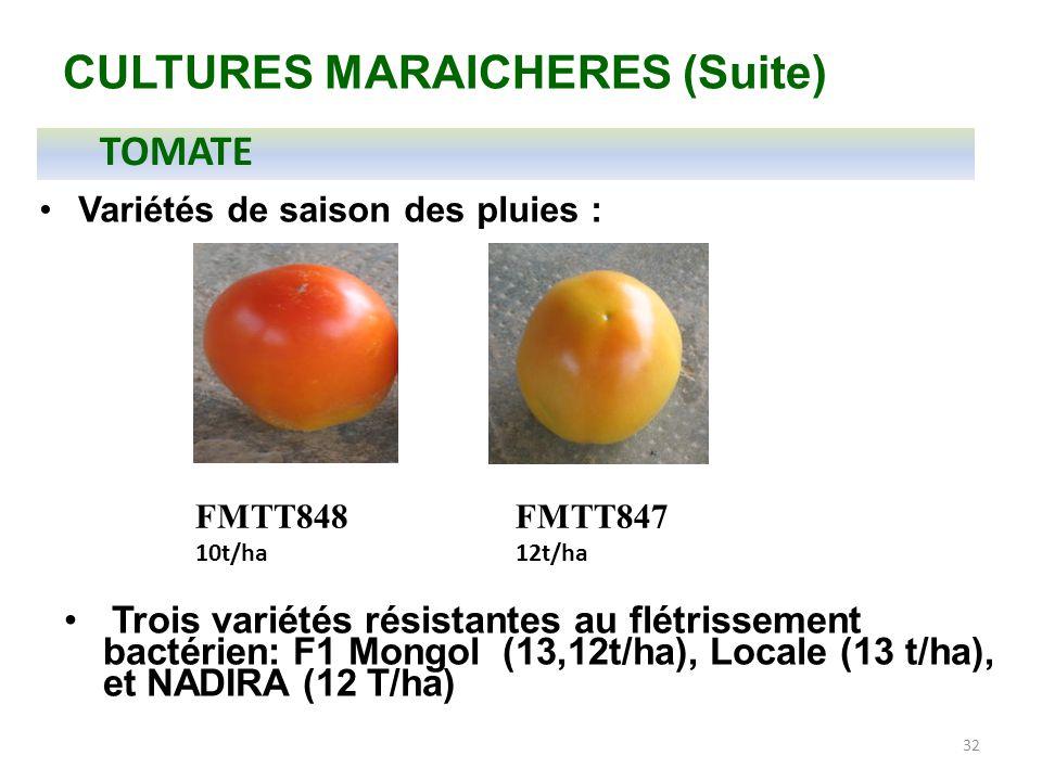 32 CULTURES MARAICHERES (Suite) FMTT848 10t/ha FMTT847 12t/ha Trois variétés résistantes au flétrissement bactérien: F1 Mongol (13,12t/ha), Locale (13