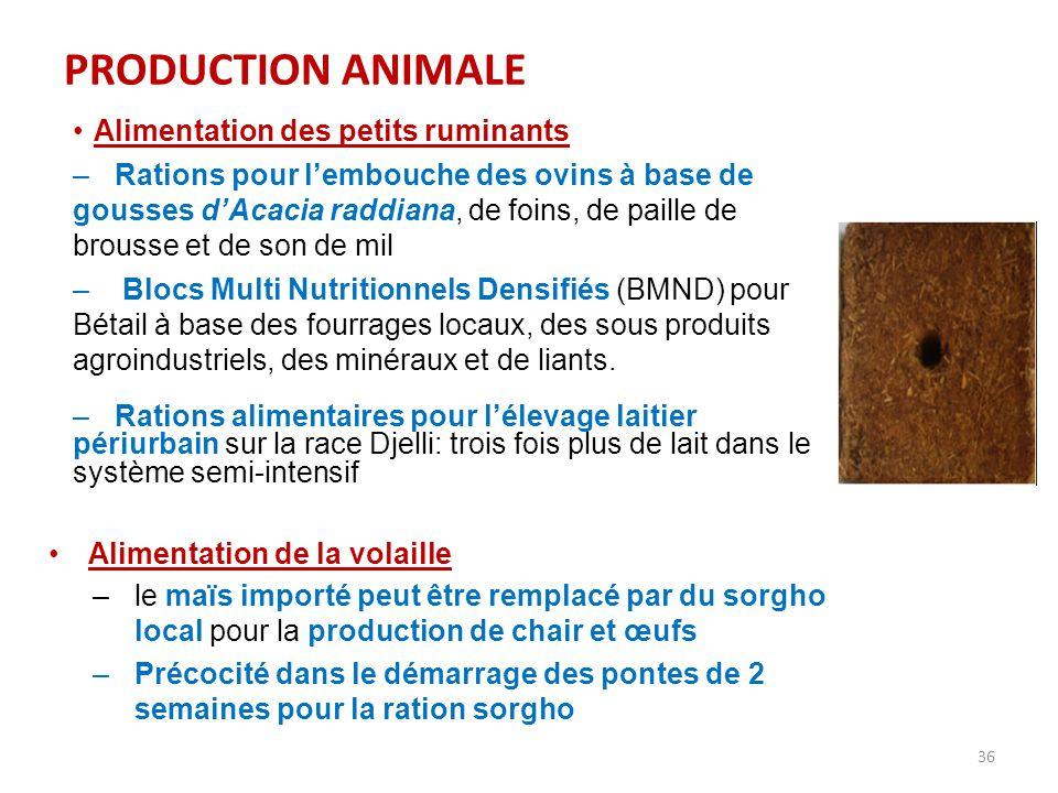 36 PRODUCTION ANIMALE Alimentation des petits ruminants –Rations pour l'embouche des ovins à base de gousses d'Acacia raddiana, de foins, de paille de