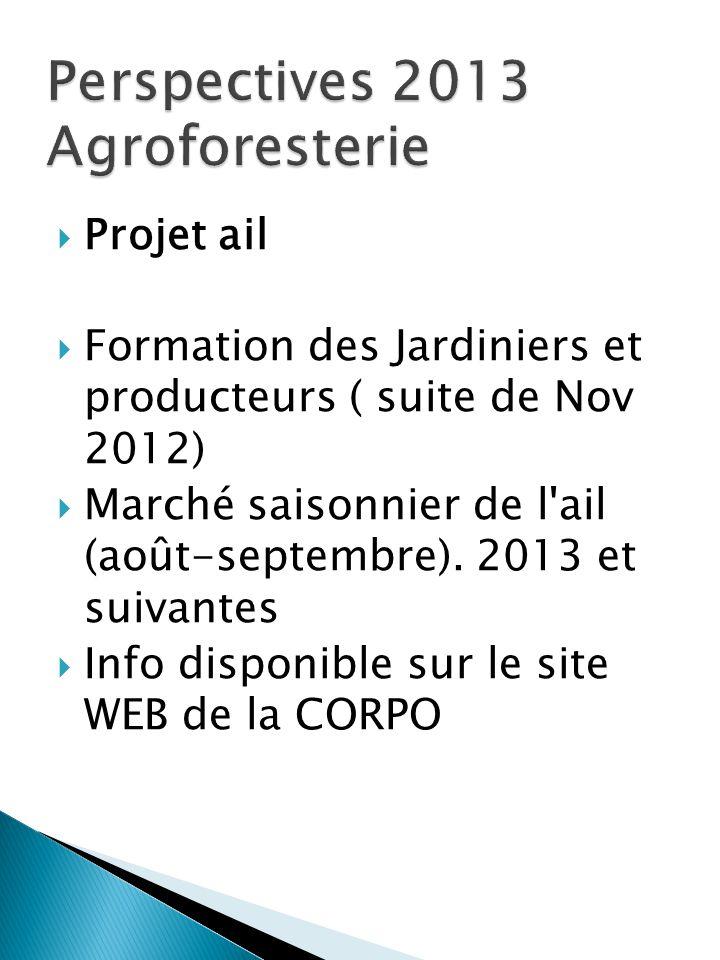  Projet ail  Formation des Jardiniers et producteurs ( suite de Nov 2012)  Marché saisonnier de l'ail (août-septembre). 2013 et suivantes  Info di