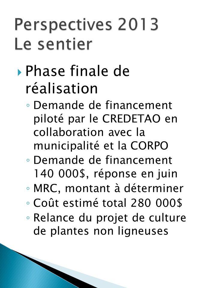  Phase finale de réalisation ◦ Demande de financement piloté par le CREDETAO en collaboration avec la municipalité et la CORPO ◦ Demande de financeme