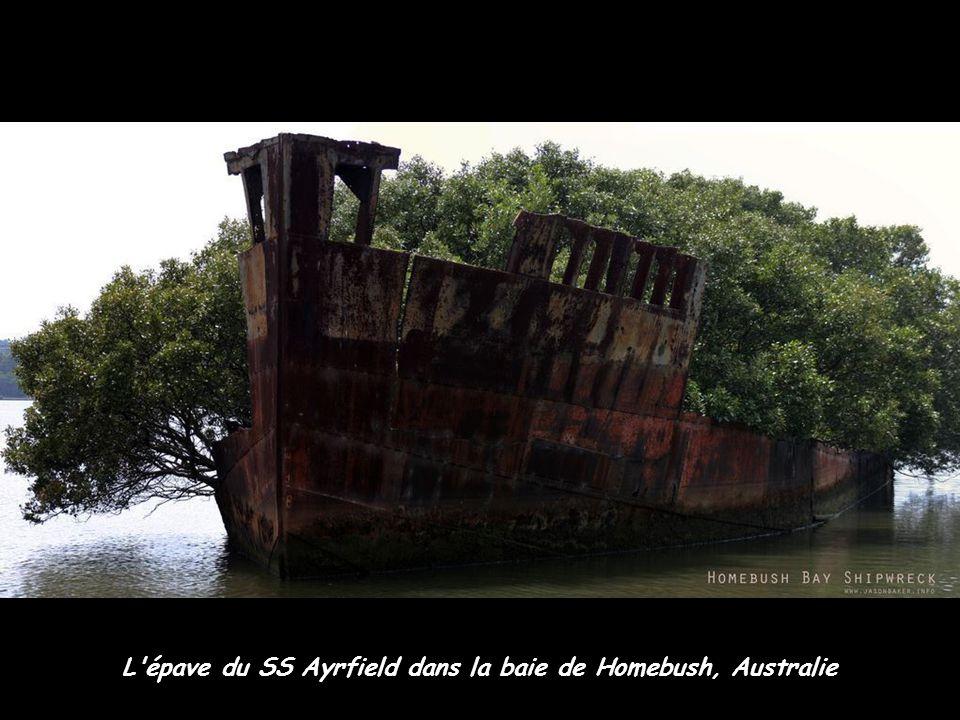 L'épave du SS Ayrfield dans la baie de Homebush, Australie