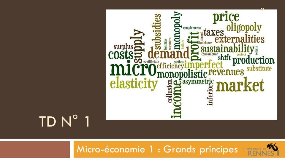 Introduction  Une analyse micro-économique se donne pour objet l'étude du comportement d'« agents » dans le domaine de l' « économie » (?) …  Pas de consensus pour définir ce qui est économique !ce qui est économique  Une des analyses micro-économiques est celle de la théorie néoclassique ou théorie de l'équilibre général ou encore théorie du choix rationnel.théorie néoclassique  Les néoclassiques sont eux-mêmes très divisés 3