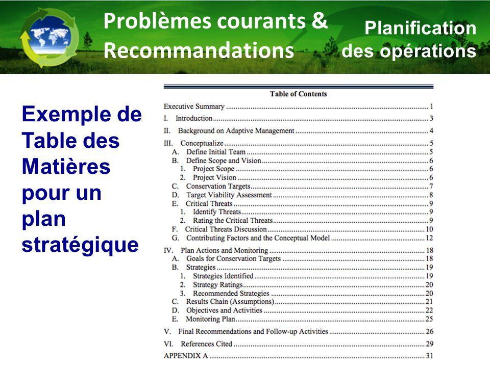 Problèmes courants & Recommandations Planification des opérations Exemple de Table des Matières pour un plan stratégique