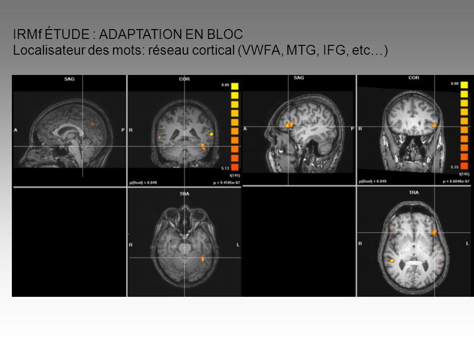 IRMf ÉTUDE : ADAPTATION EN BLOC Localisateur des mots: réseau cortical (VWFA, MTG, IFG, etc…)