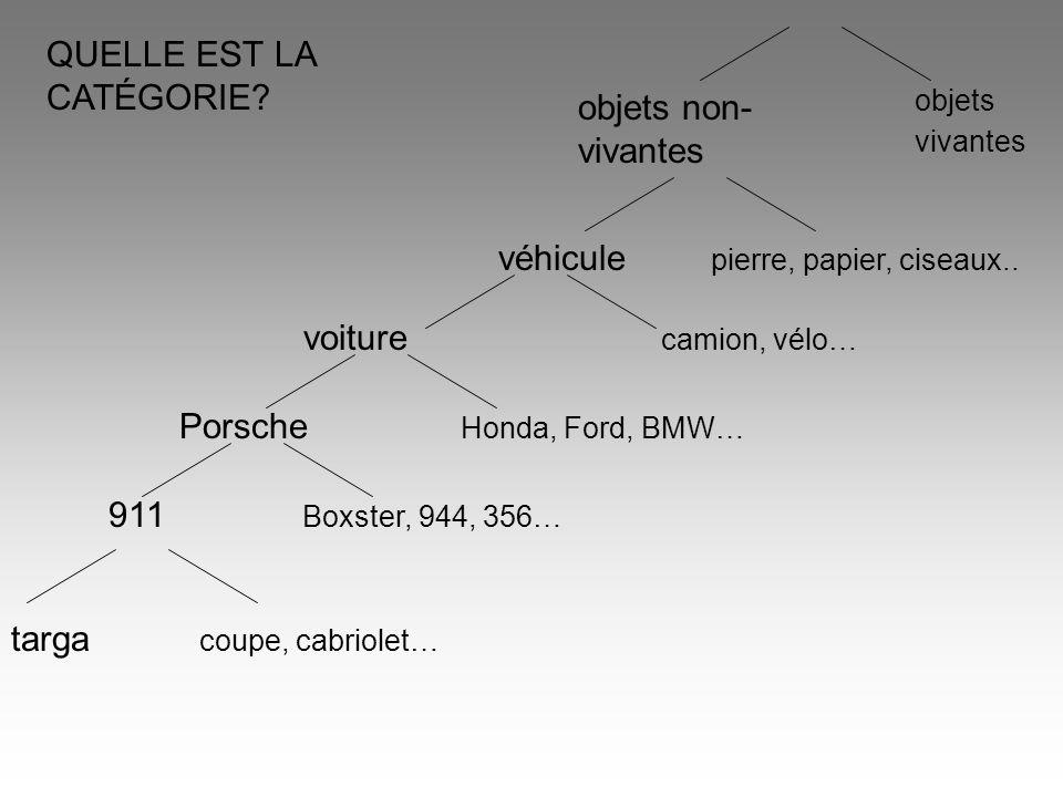 QUELLE EST LA CATÉGORIE? voiture camion, vélo… 911 Boxster, 944, 356… objets non- vivantes objets vivantes Porsche Honda, Ford, BMW… targa coupe, cabr