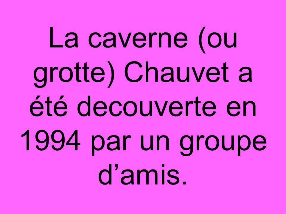 La caverne (ou grotte) Chauvet a été decouverte en 1994 par un groupe d'amis.