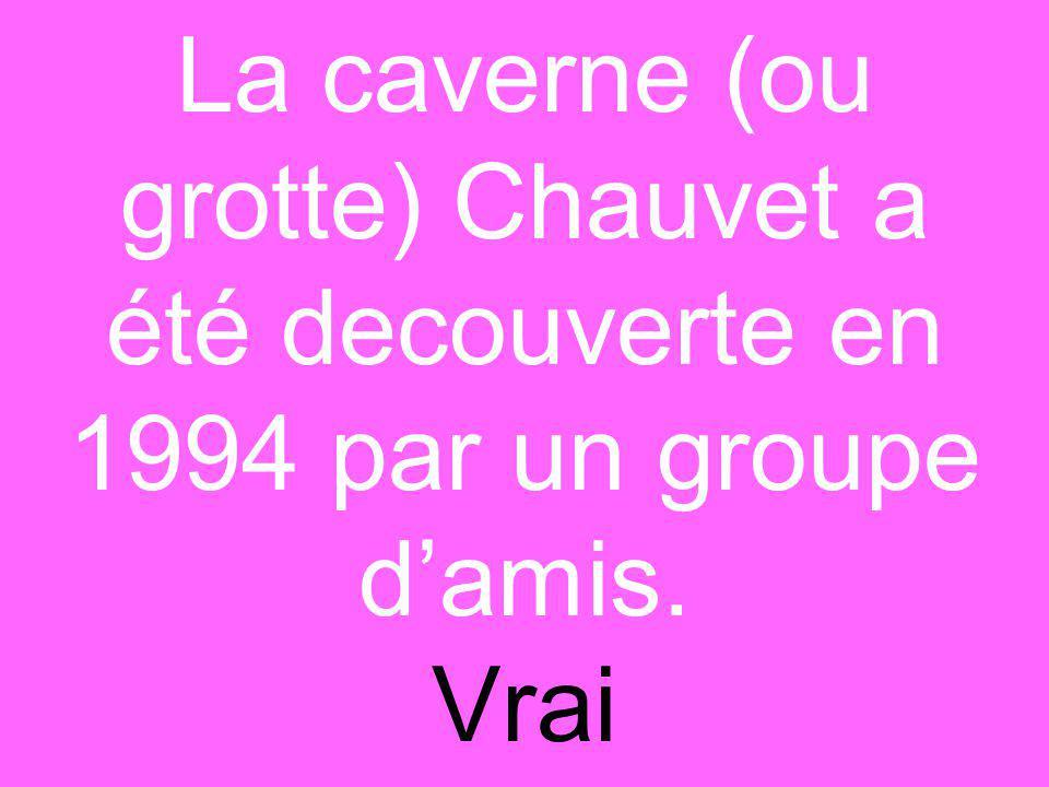 La caverne (ou grotte) Chauvet a été decouverte en 1994 par un groupe d'amis. Vrai