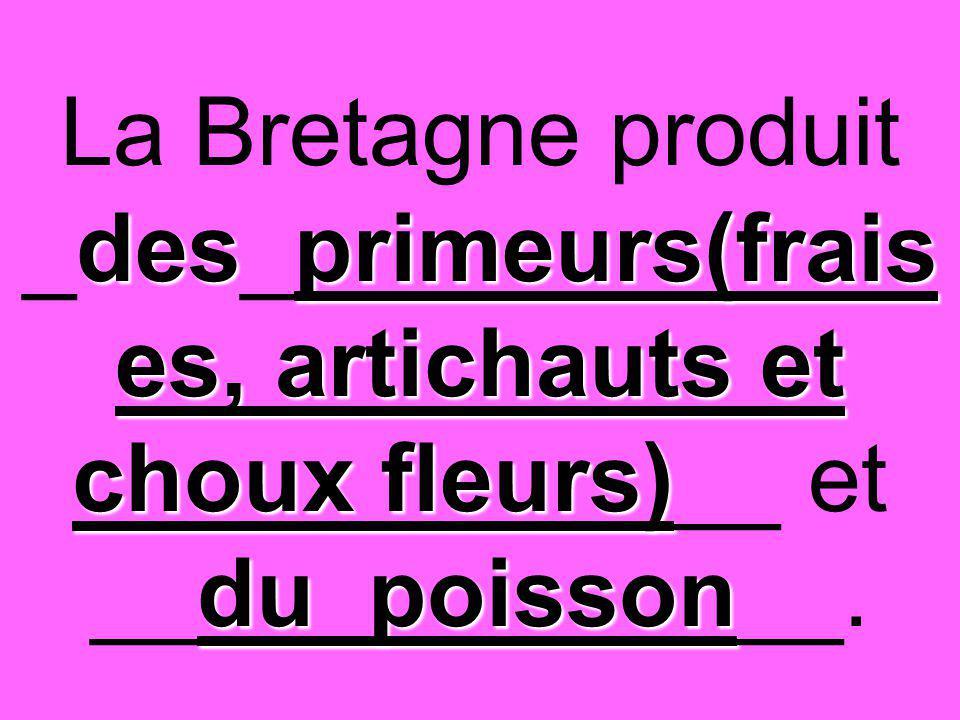 desprimeurs(frais es, artichauts et choux fleurs) du poisson La Bretagne produit _des_primeurs(frais es, artichauts et choux fleurs)__ et __du poisson__.