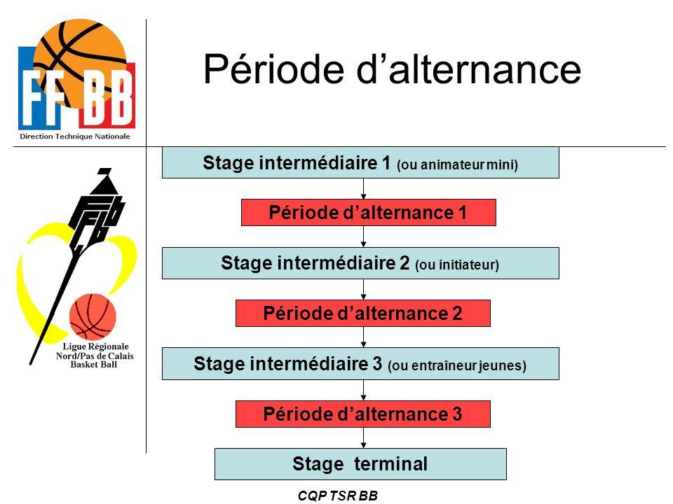 CQP TSR BB Période d'alternance Stage intermédiaire 1 (ou animateur mini) Stage intermédiaire 2 (ou initiateur) Stage intermédiaire 3 (ou entraîneur j