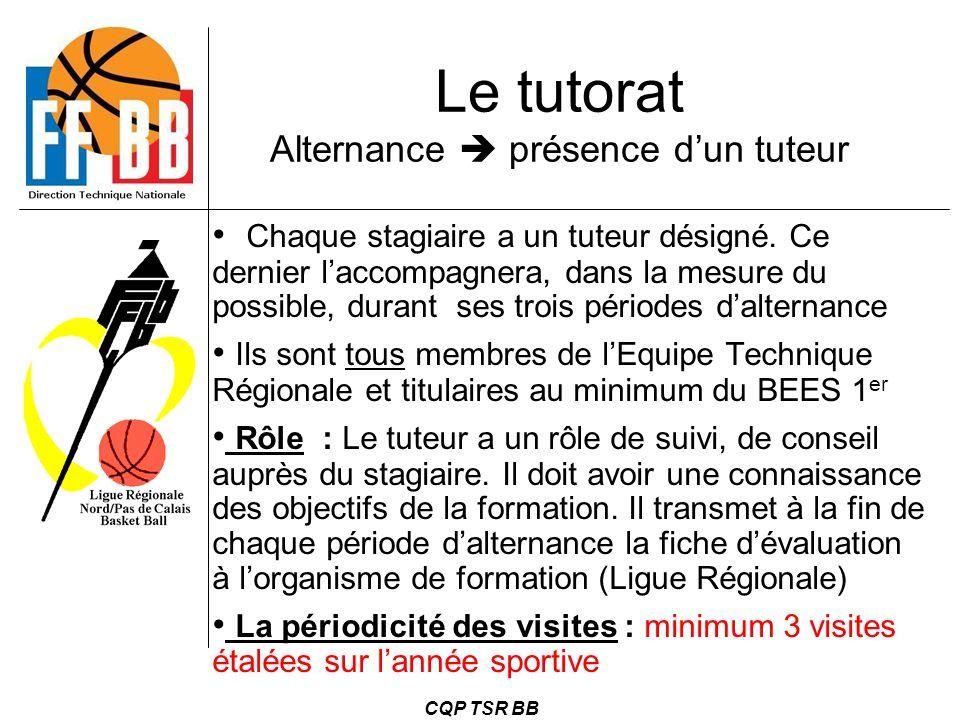 CQP TSR BB Le tutorat Alternance  présence d'un tuteur Chaque stagiaire a un tuteur désigné. Ce dernier l'accompagnera, dans la mesure du possible, d