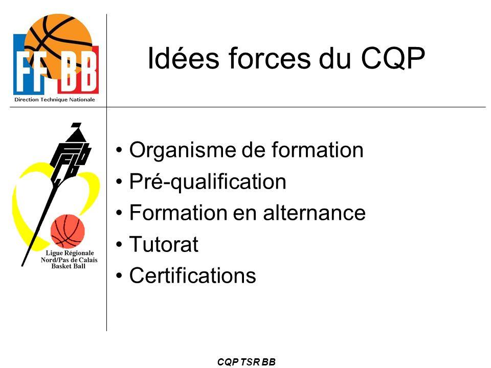 CQP TSR BB Idées forces du CQP Organisme de formation Pré-qualification Formation en alternance Tutorat Certifications