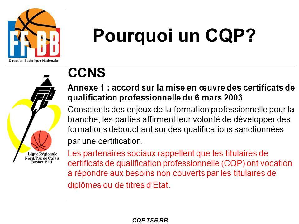 CQP TSR BB Pourquoi un CQP? CCNS Annexe 1 : accord sur la mise en œuvre des certificats de qualification professionnelle du 6 mars 2003 Conscients des