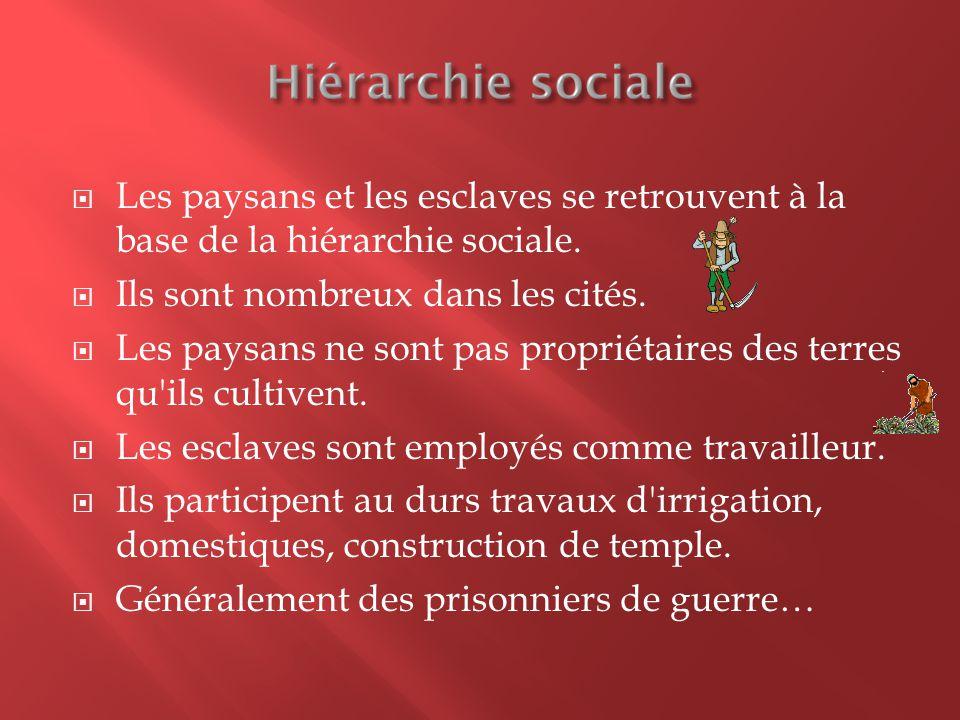 Les paysans et les esclaves se retrouvent à la base de la hiérarchie sociale.  Ils sont nombreux dans les cités.  Les paysans ne sont pas propriét