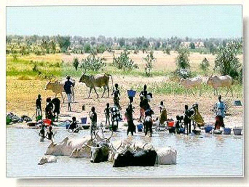 Objectif général : redynamiser le système de planification et de gestion durable des ressources en eau du Sénégal dans le cadre du PAGIRE.
