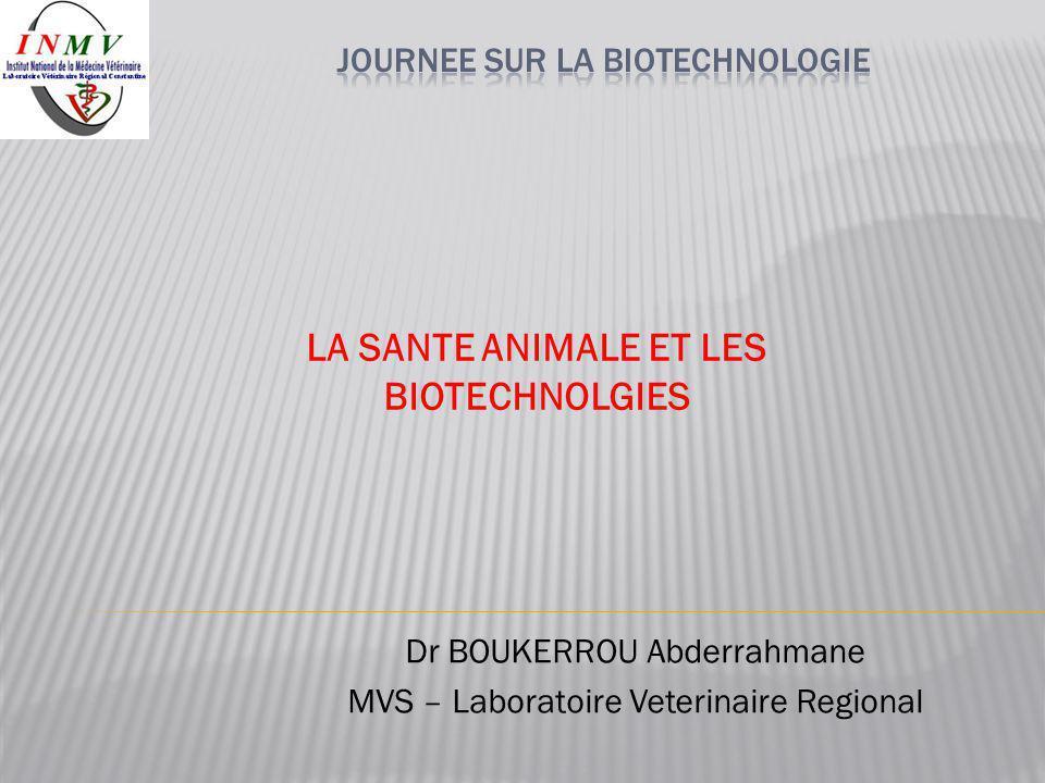 LA SANTE ANIMALE ET LES BIOTECHNOLGIES Dr BOUKERROU Abderrahmane MVS – Laboratoire Veterinaire Regional