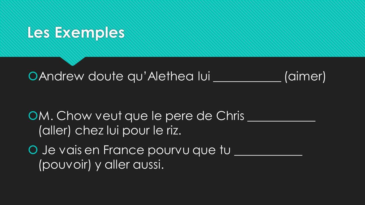Les Exemples  Andrew doute qu'Alethea lui ___________ (aimer)  M. Chow veut que le pere de Chris ___________ (aller) chez lui pour le riz.  Je vais