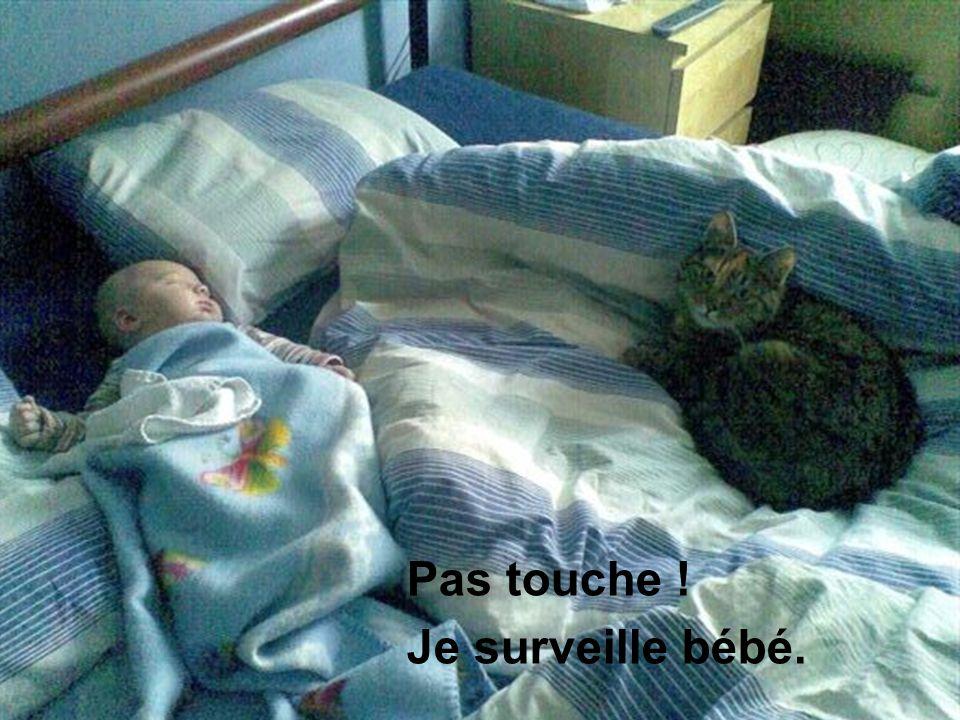 Pas touche ! Je surveille bébé.