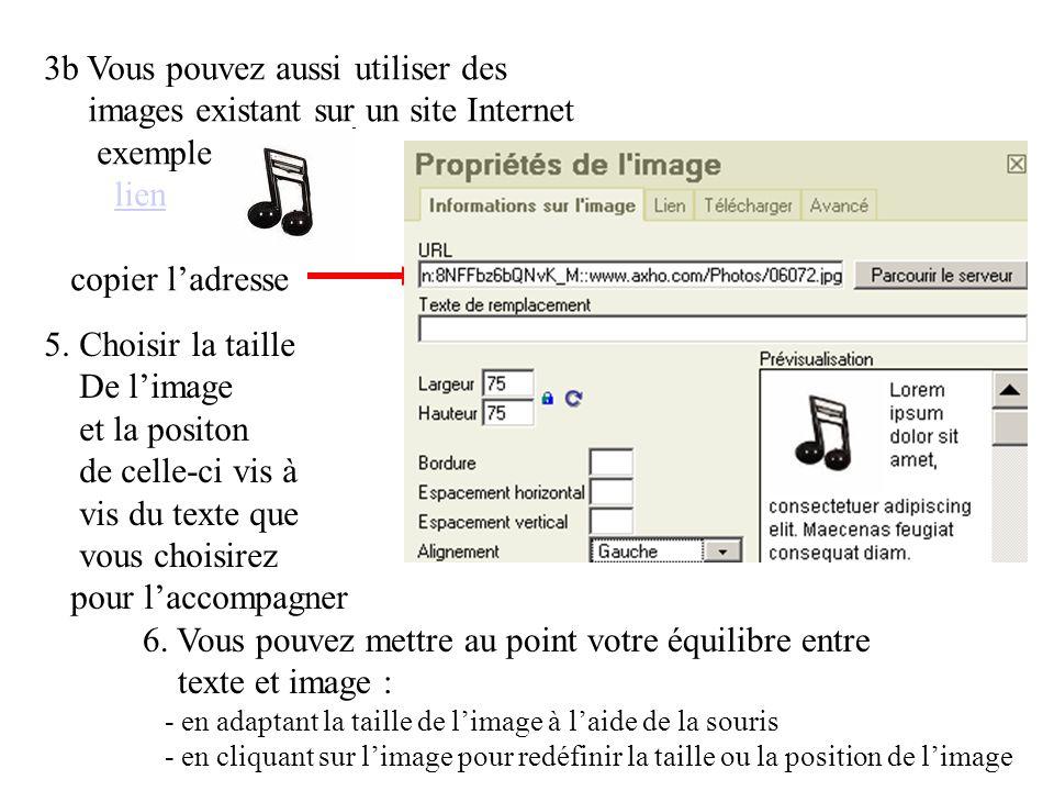 3b Vous pouvez aussi utiliser des images existant sur un site Internet exemple lien copier l'adresselien 5.