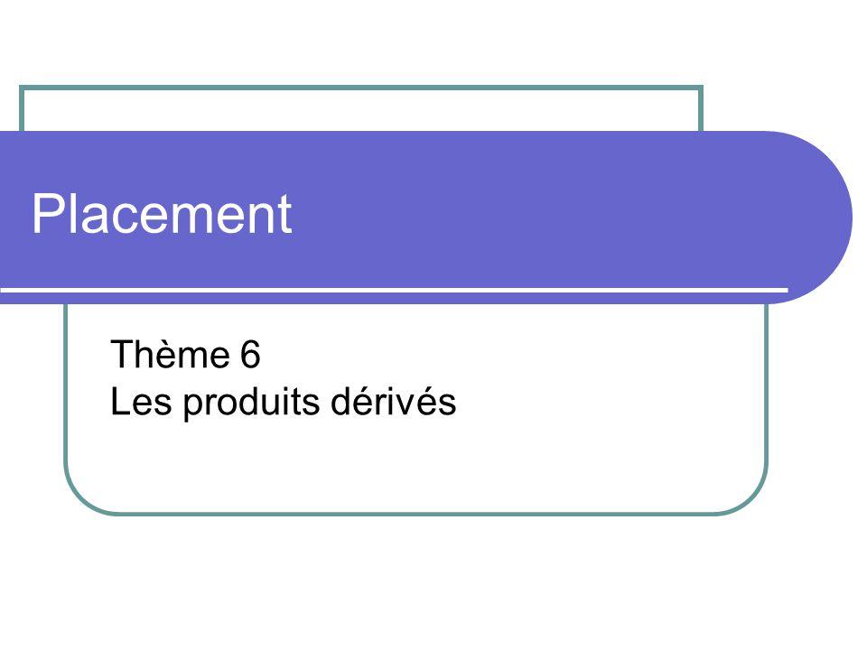 Placement Thème 6 Les produits dérivés