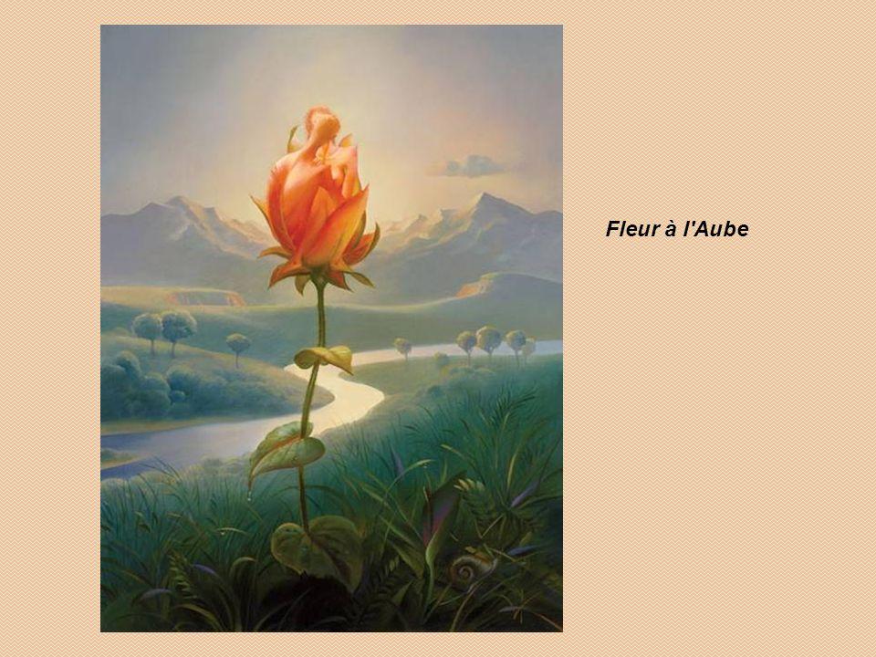 Fleur à l Aube