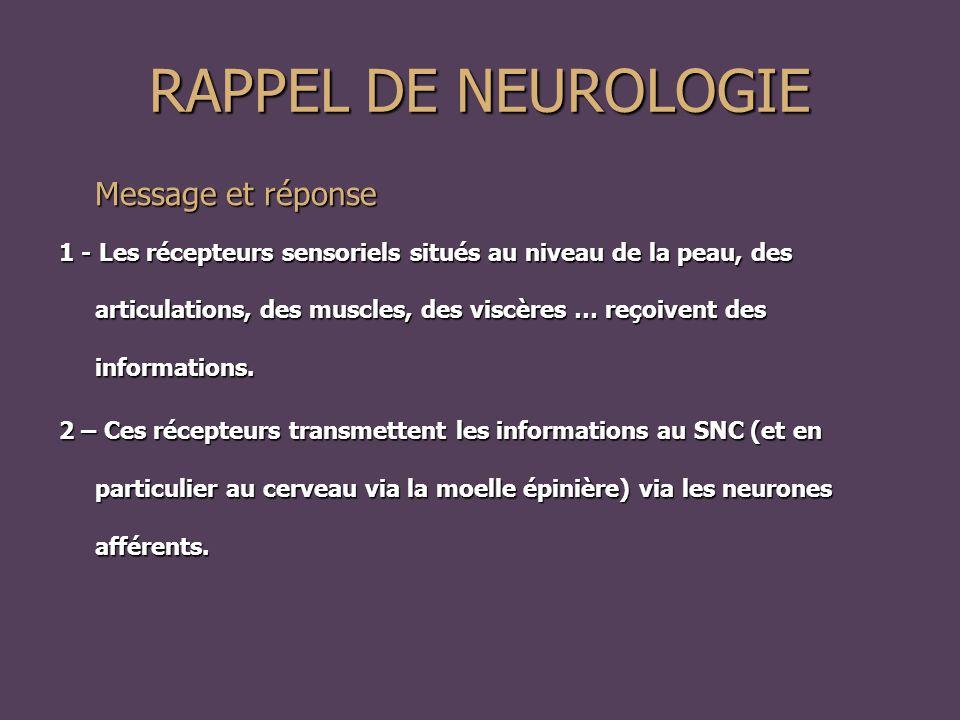 RAPPEL DE NEUROLOGIE Message et réponse 1 - Les récepteurs sensoriels situés au niveau de la peau, des articulations, des muscles, des viscères … reçoivent des informations.