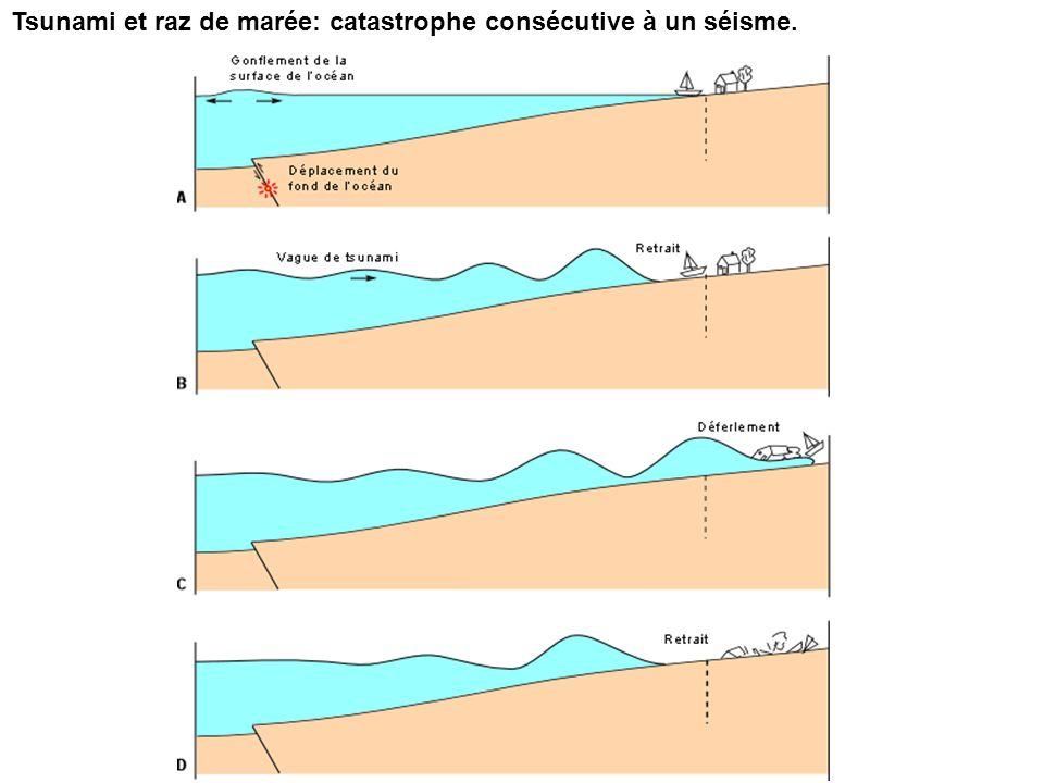 Tsunami et raz de marée: catastrophe consécutive à un séisme.