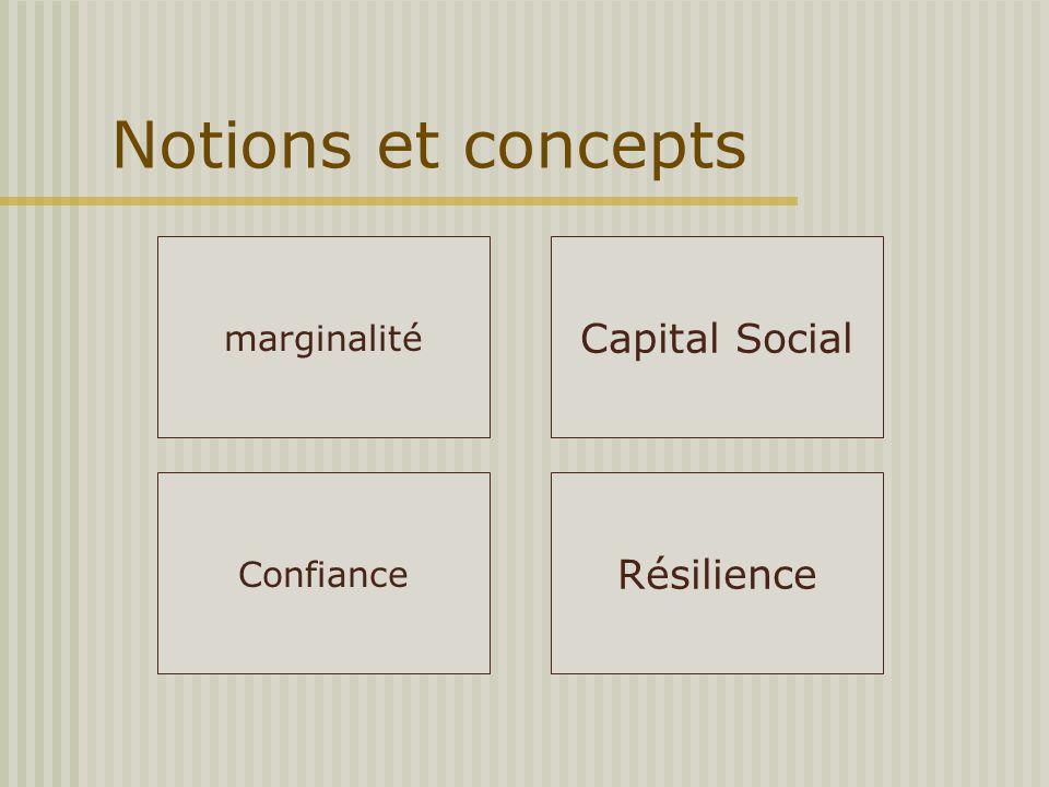 Notions et concepts marginalité Confiance Capital Social Résilience
