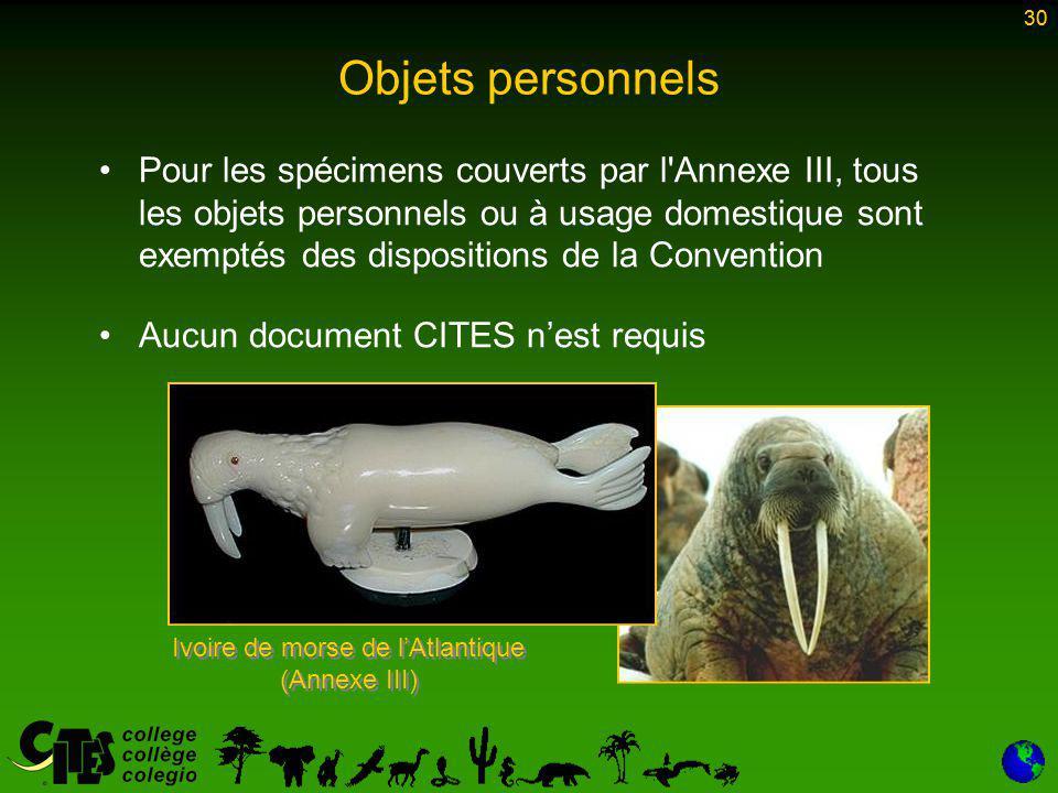 30 Objets personnels Pour les spécimens couverts par l Annexe III, tous les objets personnels ou à usage domestique sont exemptés des dispositions de la Convention Aucun document CITES n'est requis 30 Ivoire de morse de l'Atlantique (Annexe III)