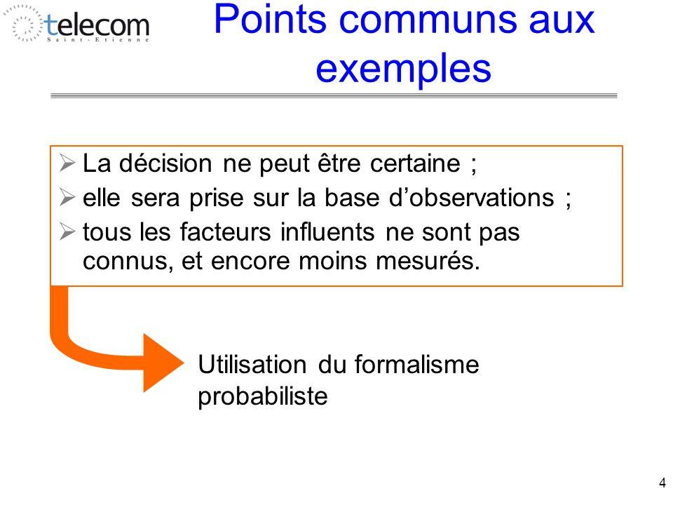 4 Points communs aux exemples  La décision ne peut être certaine ;  elle sera prise sur la base d'observations ;  tous les facteurs influents ne sont pas connus, et encore moins mesurés.
