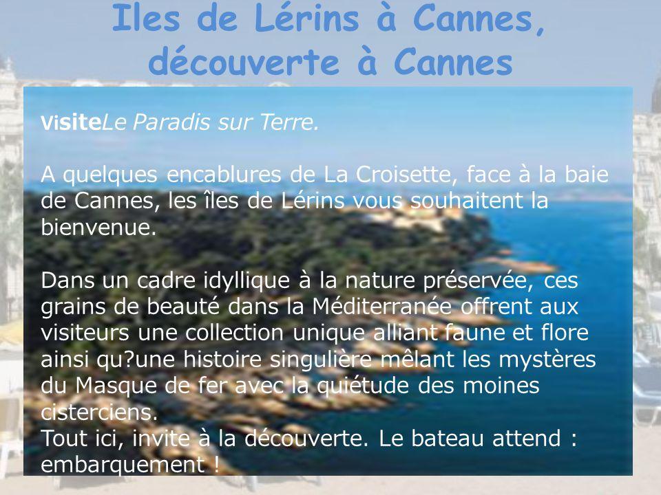 Iles de Lérins à Cannes, découverte à Cannes Vi siteLe Paradis sur Terre. A quelques encablures de La Croisette, face à la baie de Cannes, les îles de
