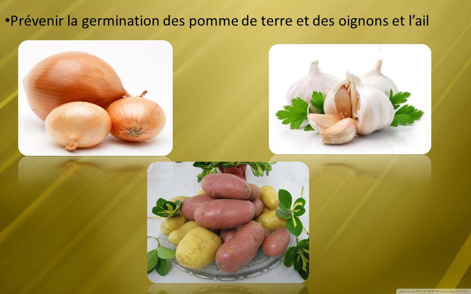 Prévenir la germination des pomme de terre et des oignons et l'ail