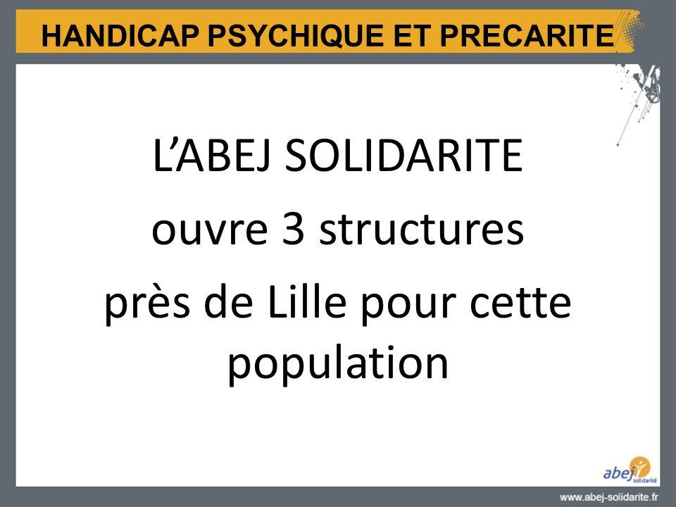 HANDICAP PSYCHIQUE ET PRECARITE L'ABEJ SOLIDARITE ouvre 3 structures près de Lille pour cette population