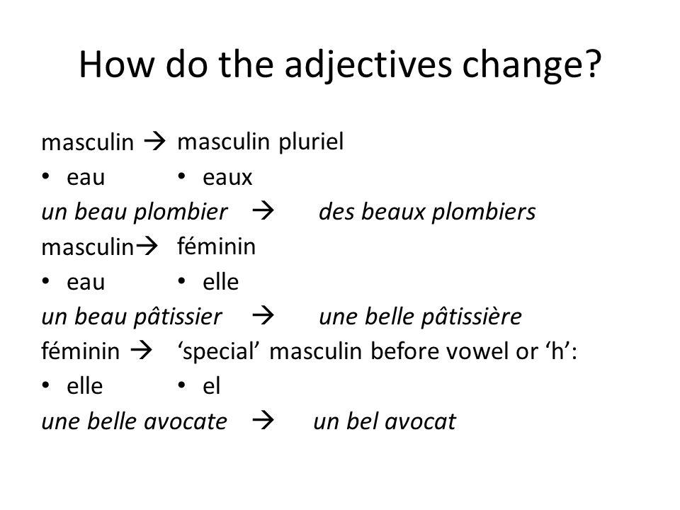 How do the adjectives change? masculin  eau un beau plombier masculin  eau un beau pâtissier féminin  elle une belle avocate masculin pluriel eaux